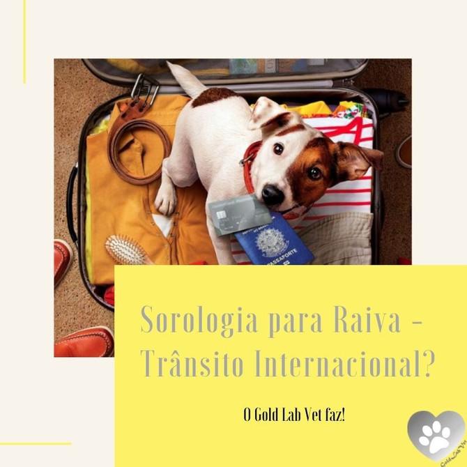 Sorologia para Raiva - Trânsito Internacional