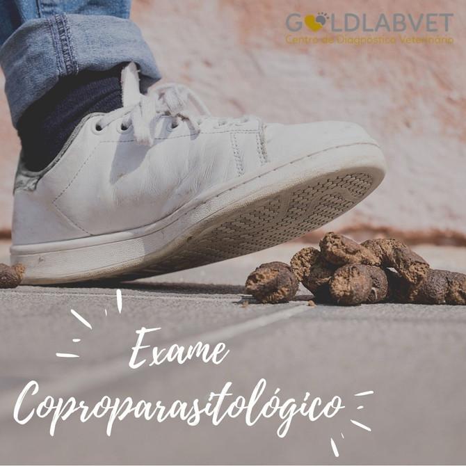 O que é o exame coproparasitológico?