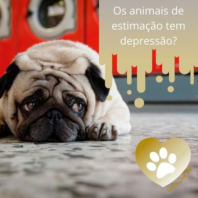 Os animais de estimação tem depressão?