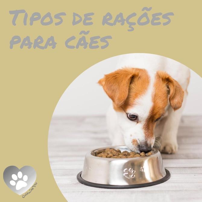 Tipos de Ração para Cães - Saiba as diferenças