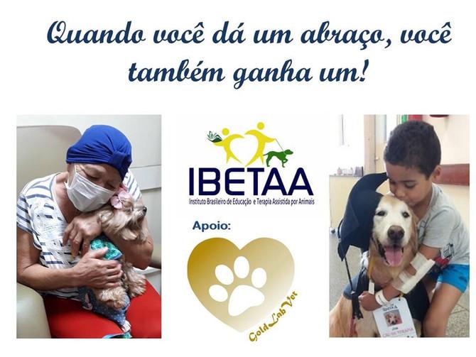 A Valorização da Interação Pessoa-Animal e o Bem-Estar dos Pets