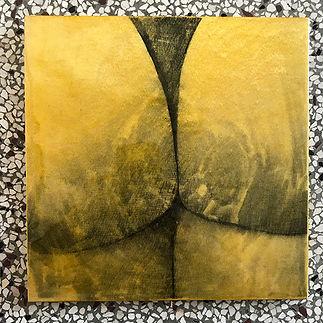 Ass_yellow.jpg
