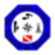 SAR Logo v3.jpg