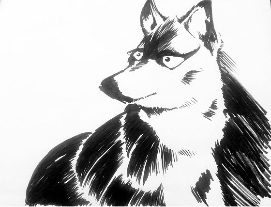 Wolf_Character_drawn_by_David_L_Brehm.jp