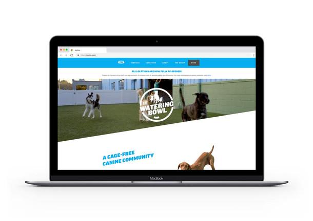 The-Watering-Bowl-Website-Laptop.jpg