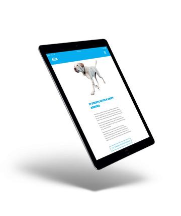 The-Watering-Bowl-Website-Tablet.jpg