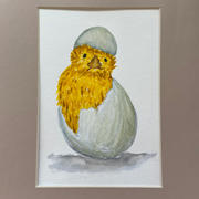 The Chicken or the Egg-Kim Morrall