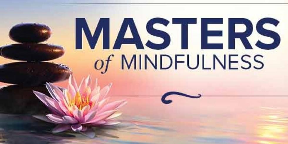Master Mindfulness - Level 2 - NEWRY