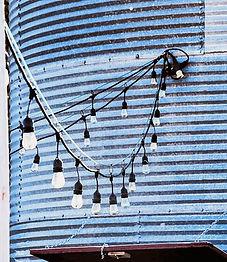 E String Lights.jpg