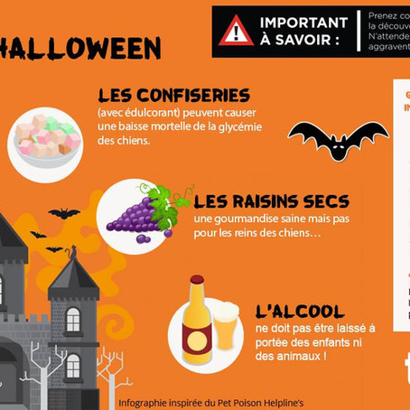 Halloween, Soyez vigilant !