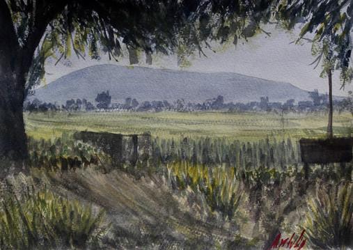 Watercolor on cotton paper, 28 x 38cm, 2018.  Value: $ 3,200 MXN