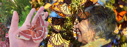 Ate Leny Butterfly