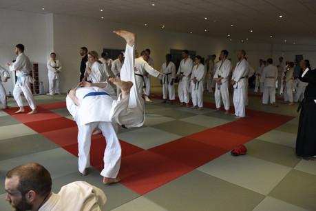 Leeds jiu jitsu classes