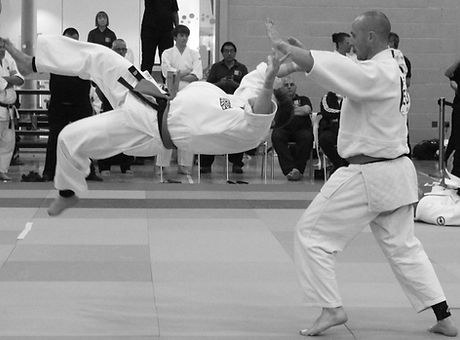 Senior Aikido Martial arts Classes.jpg