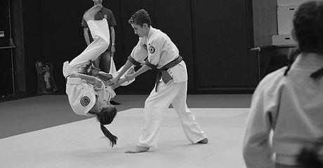 aikido_edited.jpg