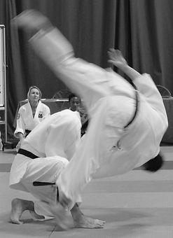 Adults aikido martial arts classes.jpg