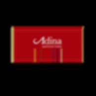 Adina Apartments_BG.png