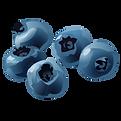 blåbär.png