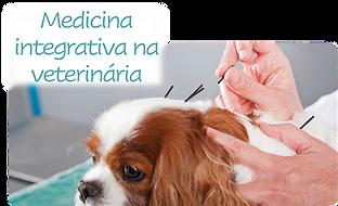 Medicina integrativa.png