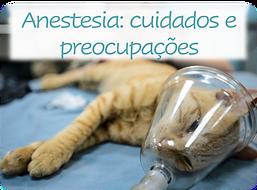 Anestesia.png