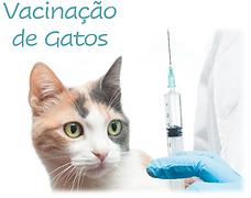 Vacinação de gatos.PNG