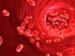 Т-клеточный пролимфоцитарный лейкоз