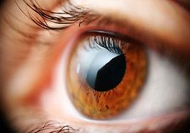 пересадка роговицы (кератопластика), замена части роговицы, восстановление функций и строения роговицы, кератоконус, дистрофия Фукса, истончение роговицы, помутнение роговицы, отторжение донорской роговицы, отёк роговицы, помутнение хрусталика (катаракта), повышение глазного давление (глаукома), поиск донорской роговицы, роговицы умерших доноров, донорская роговица, замена внутреннего слоя роговицы, глубокая пластинчатая трансплантация, пересадка слоистой поверхности, замена поверхностный слоёв, турецкие хирурги-офтальмологи, коррекция неравномерности в роговицу (астигматизма), коррекция аномалий рефракции, лазерная хирургия глаза
