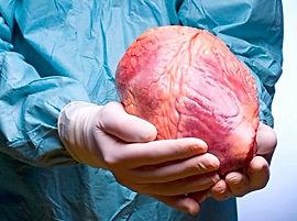 кардиваскулярная хирургия, сердечно-сосудистая хирургия в Турции, операции на сердце, аневризма, инфаркт миокарда, коронарная хирургия, варикозное расширение вен, сердечная недостаточность, инсульт, хирургия клапанов сердца