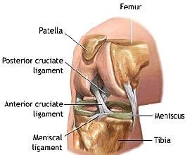артроскопия, хирургия миниска, операции на миниск, повреждение миниска, коленный сустав, артрит, артроз, тазобедренный сустав, лечение в Турции, артроскопия в Турции, плечевой сустав