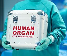 цирроз печени, пересадка печени в Турции, трансплантация печени, биопсия печени, асцит, желтуха, дон