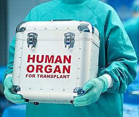 пересадка органов в Турции, пересадка печени, пересадка почек, пересадка лёгких, пересадка от живого донара, трансплантология в Турции