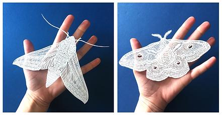Moth+web+header.png