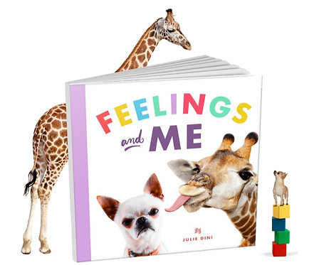 Feelings and Me Picture Book