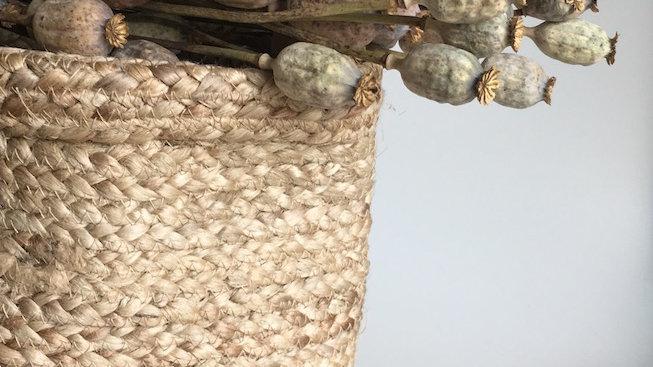 Gedroogde Bloemen, droogbloemen Gedroogde Natuurlijke Papaver Poppy Seed Head - per 10 stengels