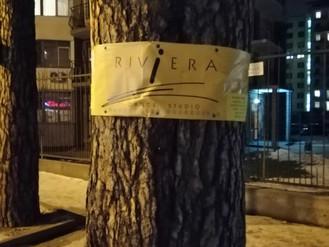 В Ірпені заборонено кріпити рекламу на деревах та парканах