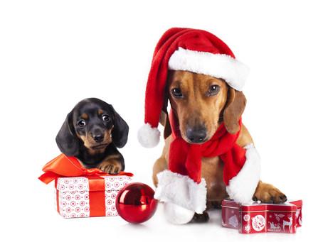 Christmas 2017 - Hervey Bay Accountant