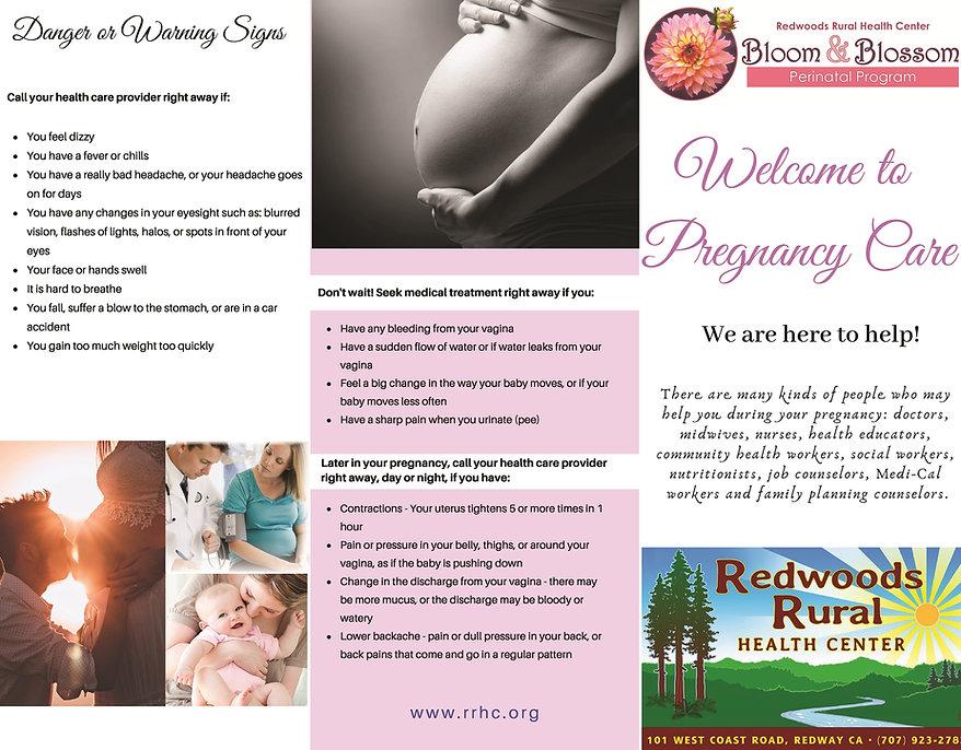 Perinatal brochure 05-19.jpg