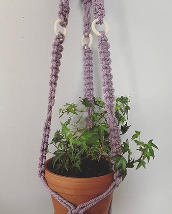 In a Daze Plant Hanger
