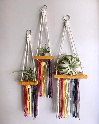 Rainbow Shelves