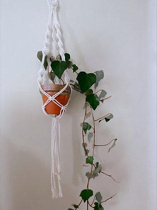 Spirals Hanger