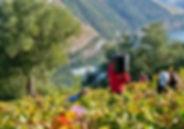 douro-vinhateiro-destino-por-excelencia-