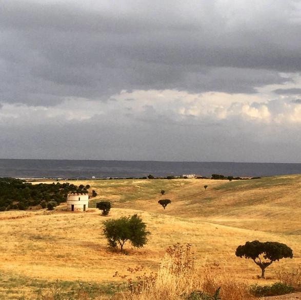 Se acerca la tormenta. Vista del Torreón