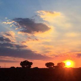 puesta de sol desde el jardín