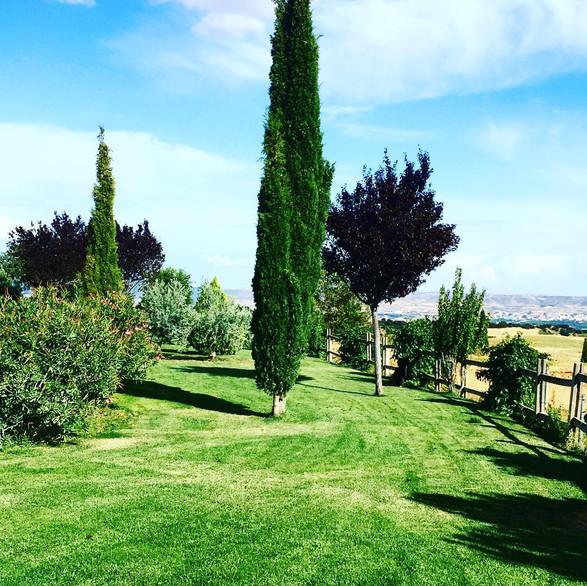 Vistas desde el Jardin