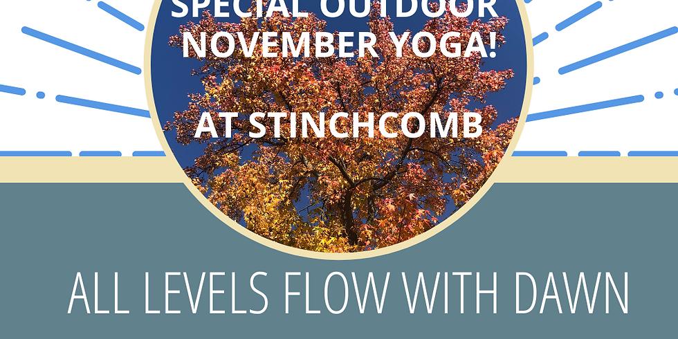 Special November Outdoor Yoga!