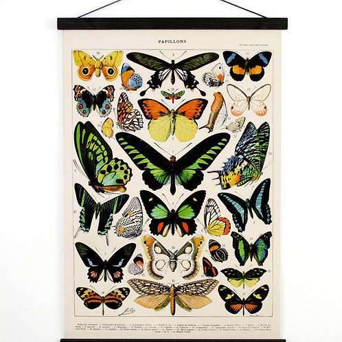Vintage butterfly canvas wall hanging
