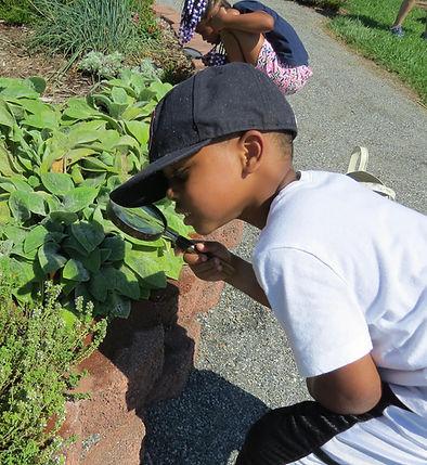 child in garden.jpg