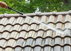 Softwashing & Roof Cleaning bromoco.jpg