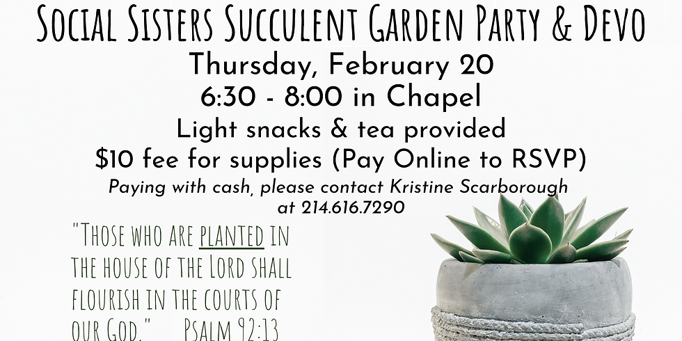 Social Sisters Succulent Garden Making Party