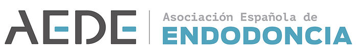 aede-logo_vi (1).jpg